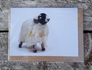 Bilde av Kort og konvolutt med Swaledale av Ruth Packham